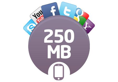 Avea Aşımsız 250mb İnternet Paketi